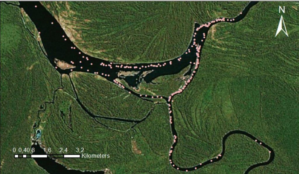 Peruvian amazon samiria river