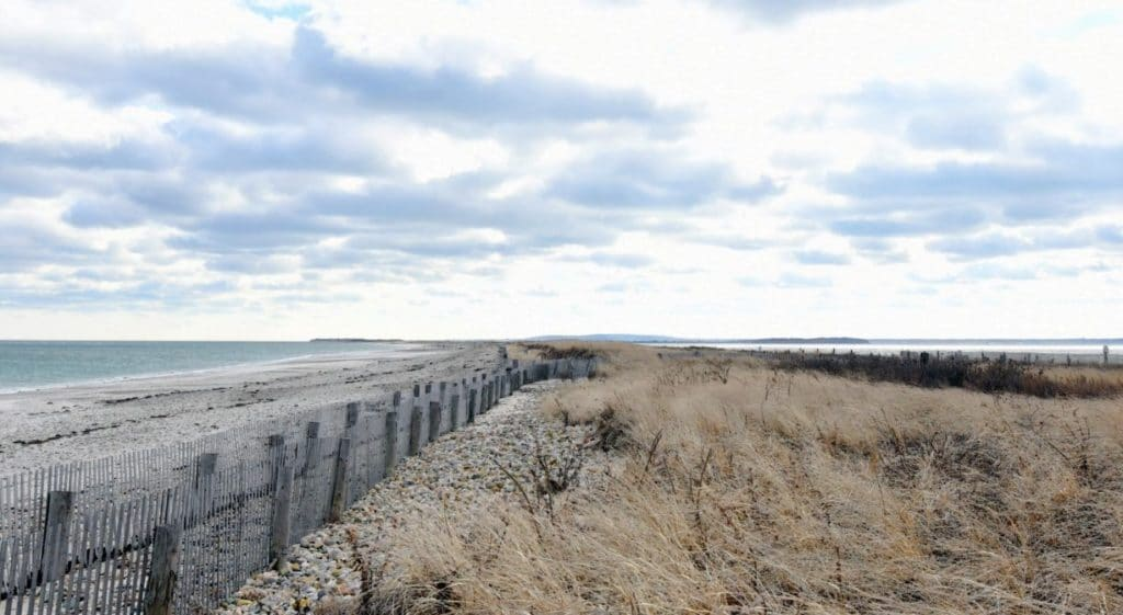Duxbury beach conservation